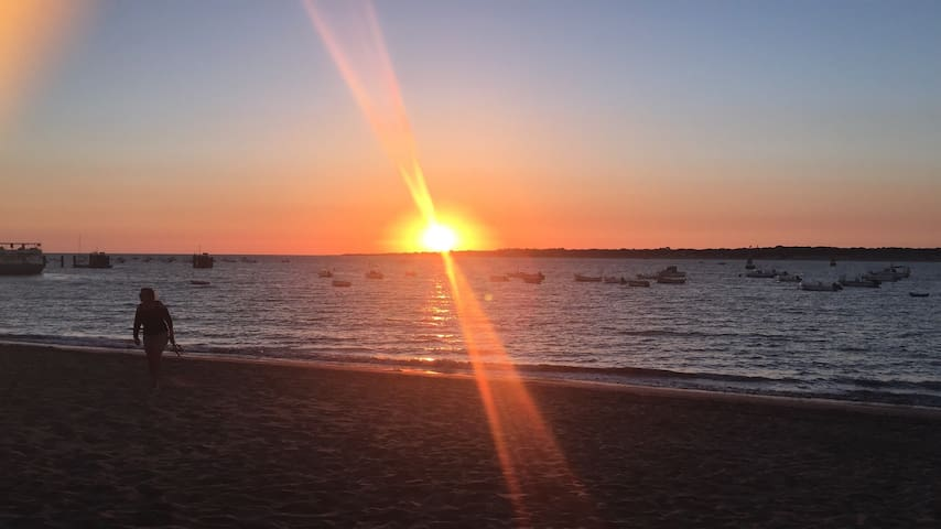 Maravillosas puestas de sol.