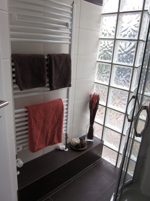 Duschbad 1v3 (Shower)