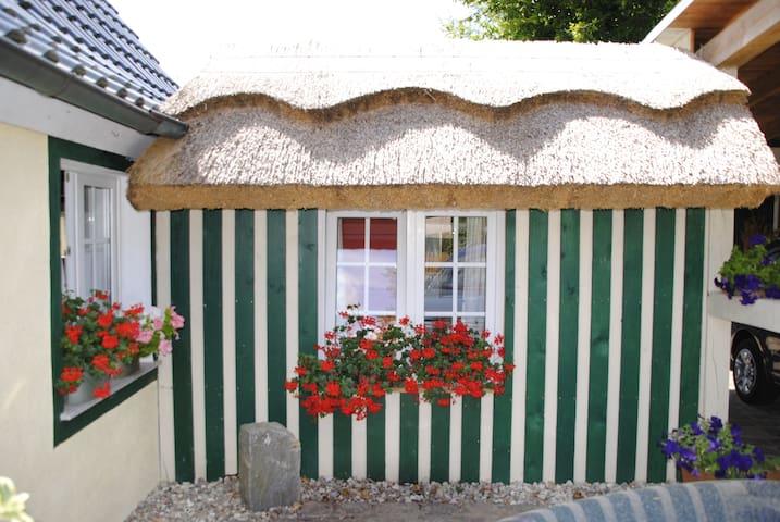 Ferienhaus Visby - Putbus - House