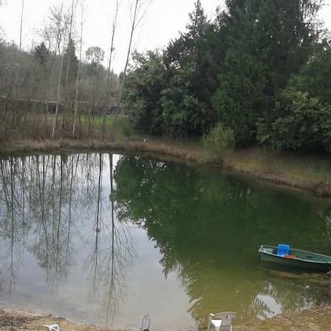 maison avec plan d'eau - Saint-Sauveur-lès-Bray - Dom