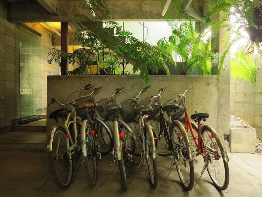 Free rental bicycles