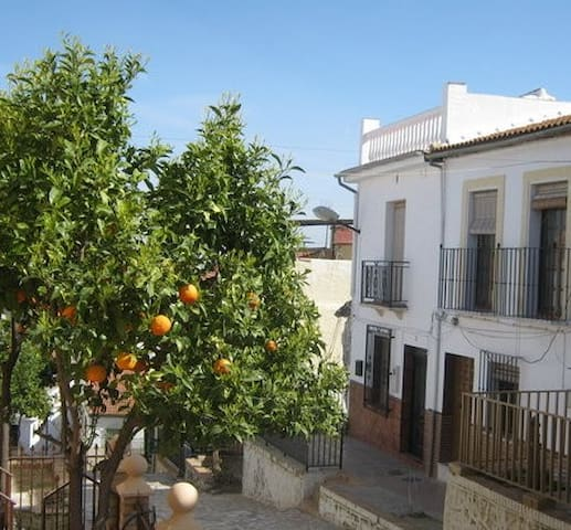 Traditional Andalucian townhouse - Alameda - House