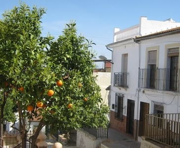 Traditional Andalucian townhouse - Alameda