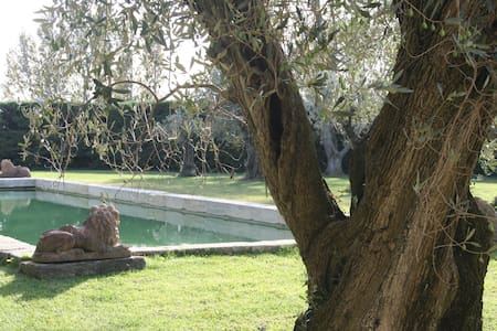 Holidays on Equestrian Estate - Mouriès