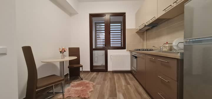 Cozy Studio near Palas Mall