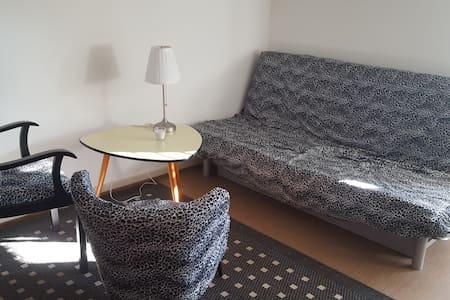 Mansardenzimmer unter dem Dach - Basel