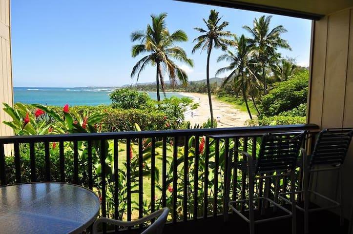 Wailua Bay 1BR Ocean Front Condo #105!