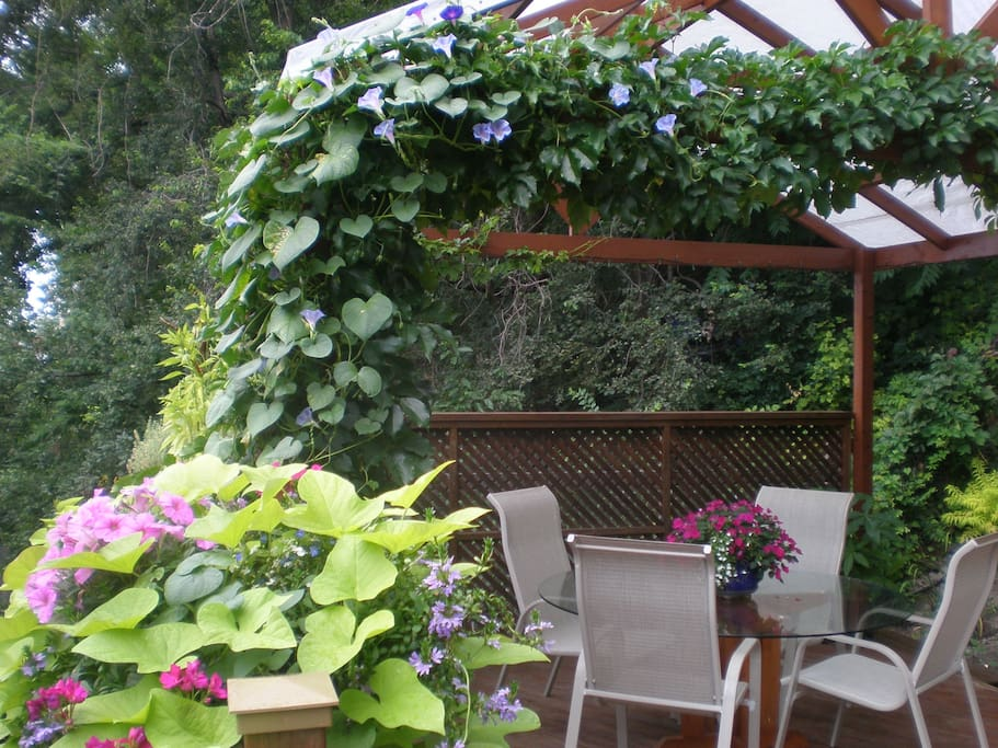 Beautiful outdoor area in the summer.