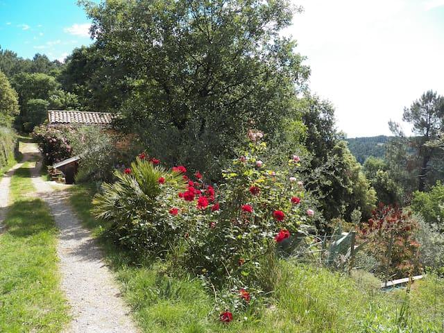 Le Petit Monde - La Clairière Sud Ardèche
