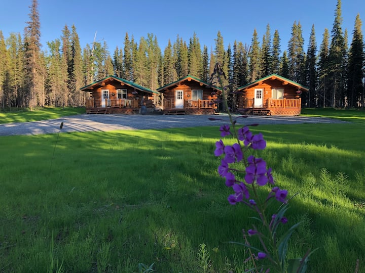 Papa Bear cabins