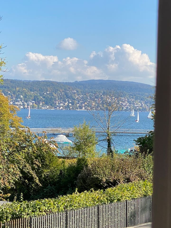 historic renovated chalet in Zurich 4rooms/1.5bath