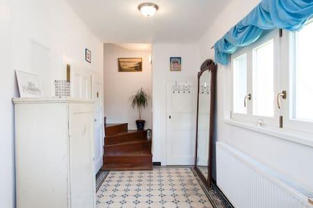 2 RMS & BTHRM IN RENOVATED HOUSE ON CITY TRANSPORT - Prága - Ház