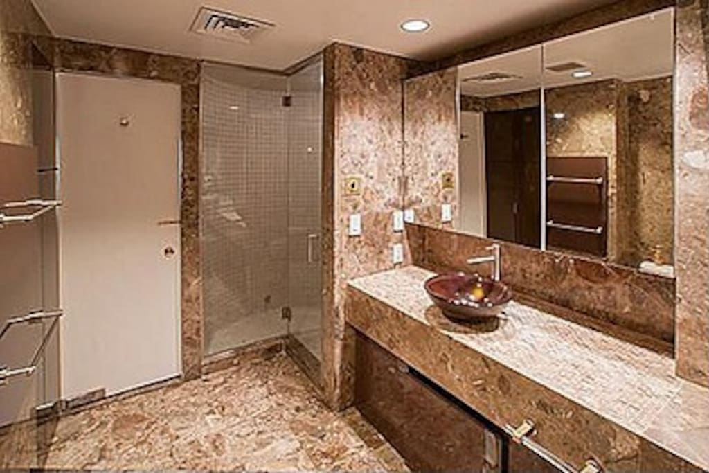 Master bathroom with sauna and shower