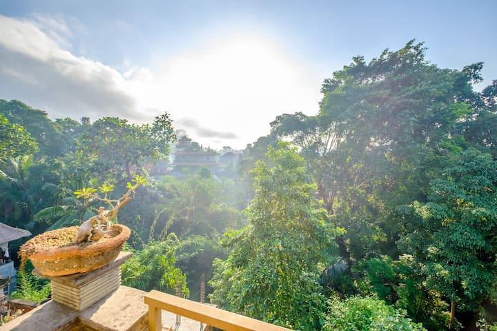 Bali Ubud Waterfall