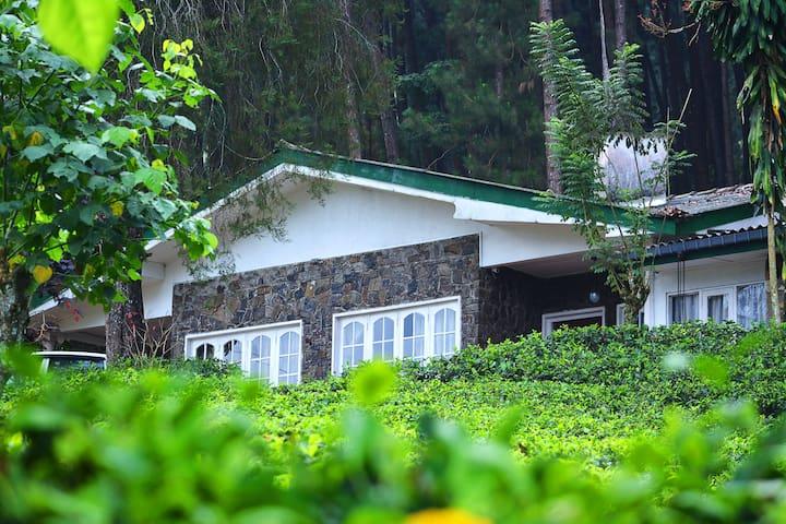 The Greendale Holiday Bungalow - Watawala - Bungalow