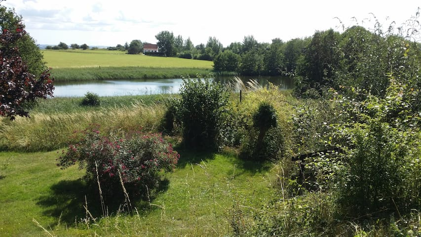 Sommerhus ud til sø og marker i Veddinge Bakker - Fårevejle - Srub