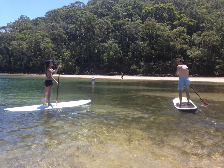 Paddle Boarding available