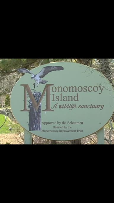 Welcome to Monomoscoy Island!