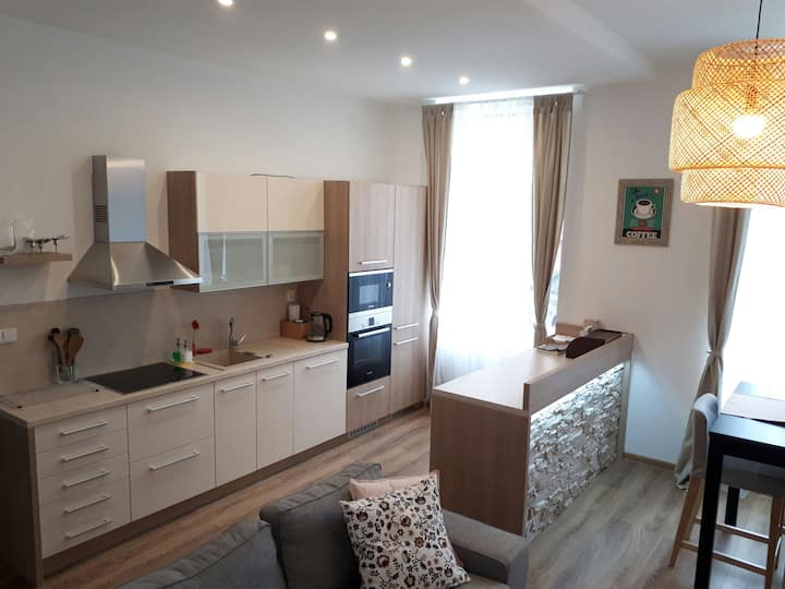Cosy and spacious home in the city centre