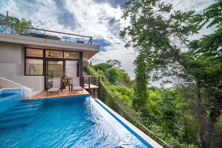 Spectacular, newly renovated ocean view home with 2 Casitas and 2 private pools!