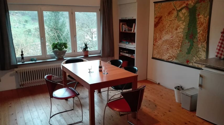 Großes Apartment mit Panoramablick in Hammelbach