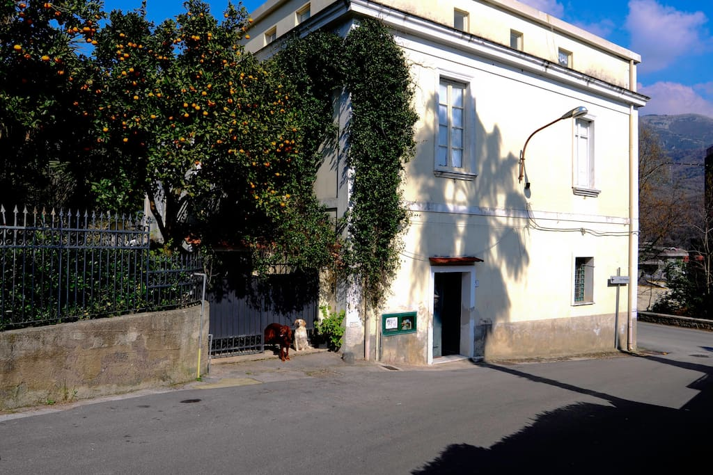 House on the hills 3km from Salerno - Entrance from via Corgiano, side street of Via Vecchia Consortile