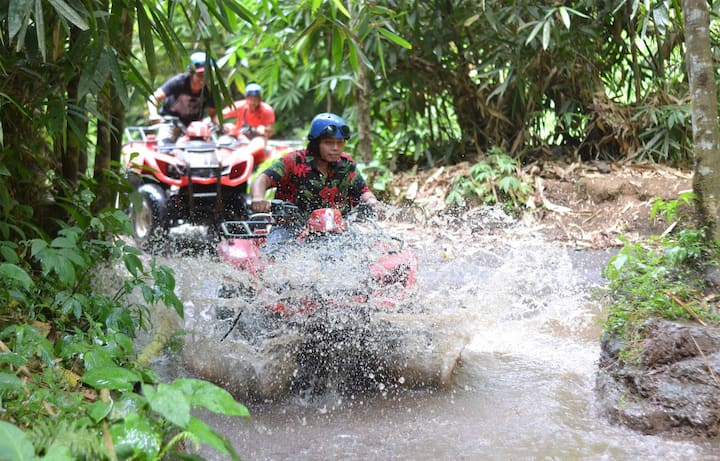Explore jungle with ATV