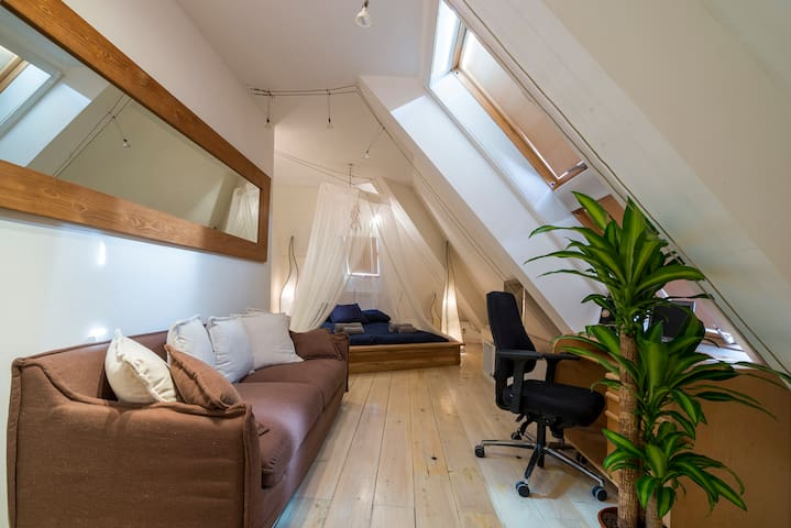The room is very spacious (approximately 20sqm) and faces south so has plenty of natural light and includes an ensuite bathroom.