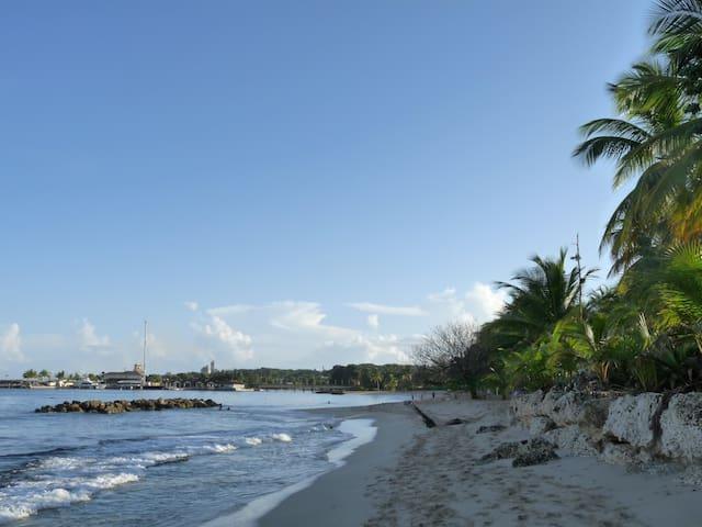Heywoods Beach 250M from Mango House