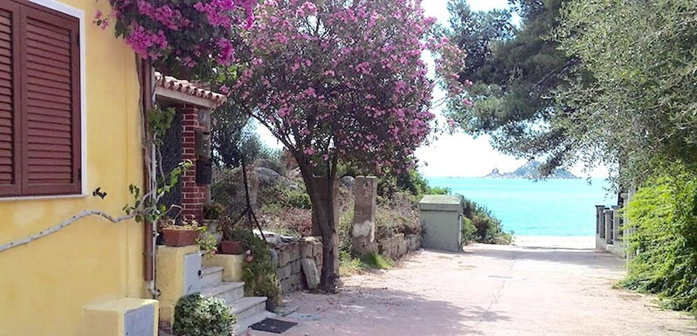 Renovated apartment 10meters from the sea,Sardinia - Santa Maria Navarrese - Lägenhet