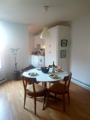 Lovely, cozy & clean apartment in Rosemont