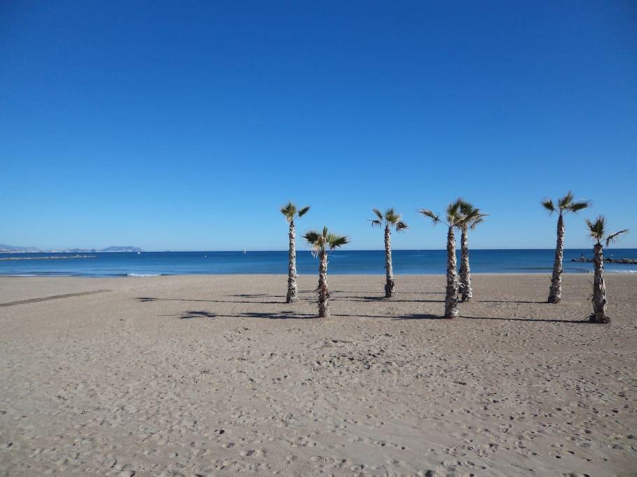Playa - Sandy beach