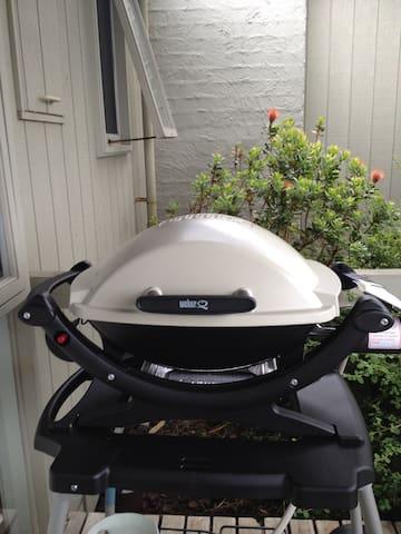 A weber, mandatory for summer cooking!!
