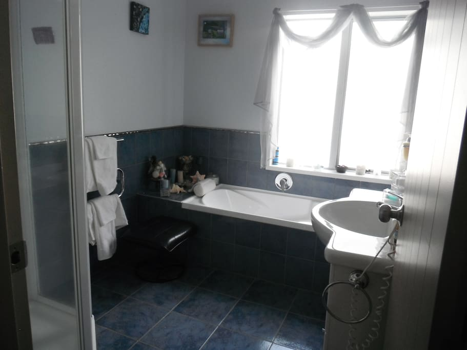 Guest bathroom with shower on left