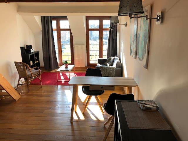 Charming Studio with mezzanine next to Train World