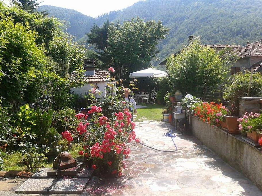 Il giardino con piscina