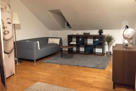 Ulm City Full Apartment 1-4 Persons - 乌尔姆 - 公寓
