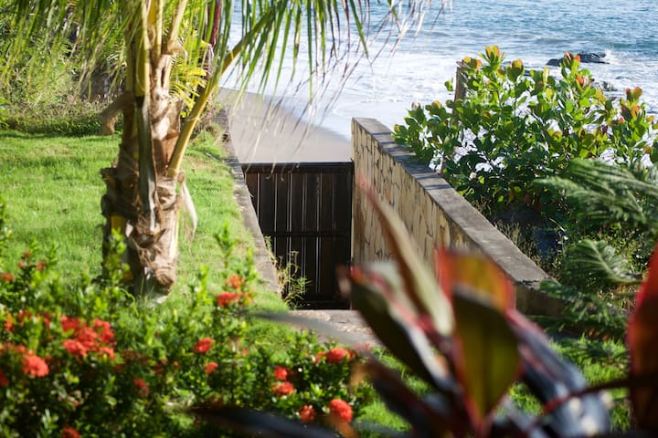 New Years Promotion!Sandinos surf house for rent! - La Villa de Operadoras - Rumah