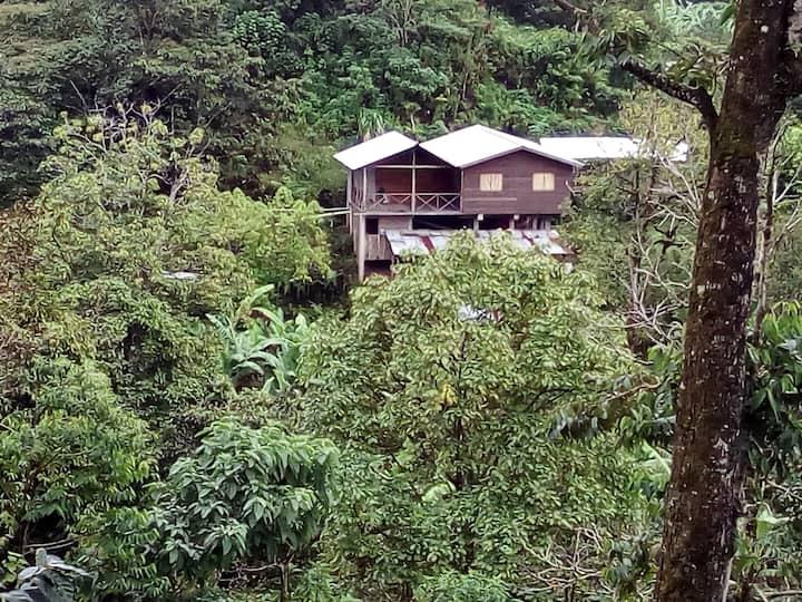 Parque Nacional Montaña de Santa Bárbara te espera