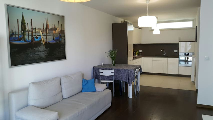 Komfortowy Gallery Apartament Lindego Bronowice