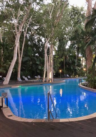 Slice Of Paradise  - Drift Palm Cove 4101