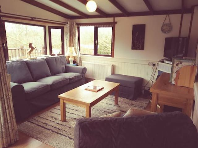 A comfortable lounge,with a  put up single bed,  to chill out and  review your day, watch TV or a Video ,  play  games  or just be. The cabin has Wifi.