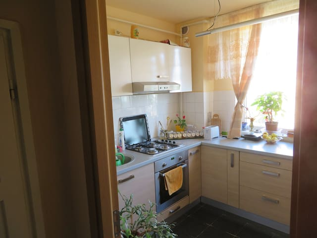 Apartment in Brasov - Brașov - Appartement