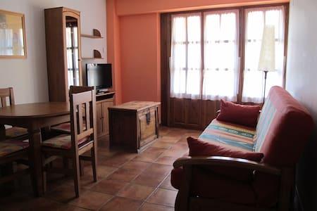 4 Apartamentos en Ordesa. Free WIFI - Broto