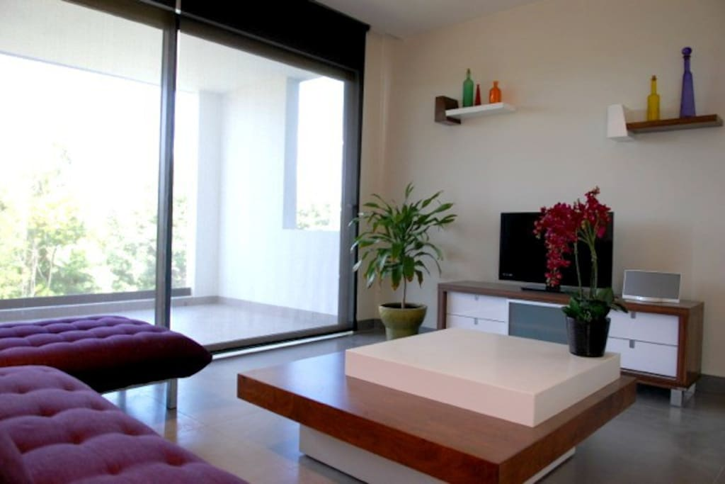 Satellite TV and large windows of the living area