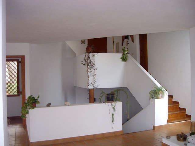 Mucha Luz y espacio en Cala Galdana - Cala Galdana - House