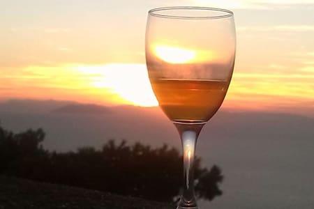 MAGIA COLORATA - Isola del giglio