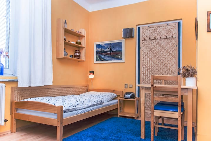 Comfy apartment in central Prague - プラハ - 別荘