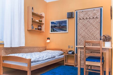 Comfy apartment in central Prague - Prague