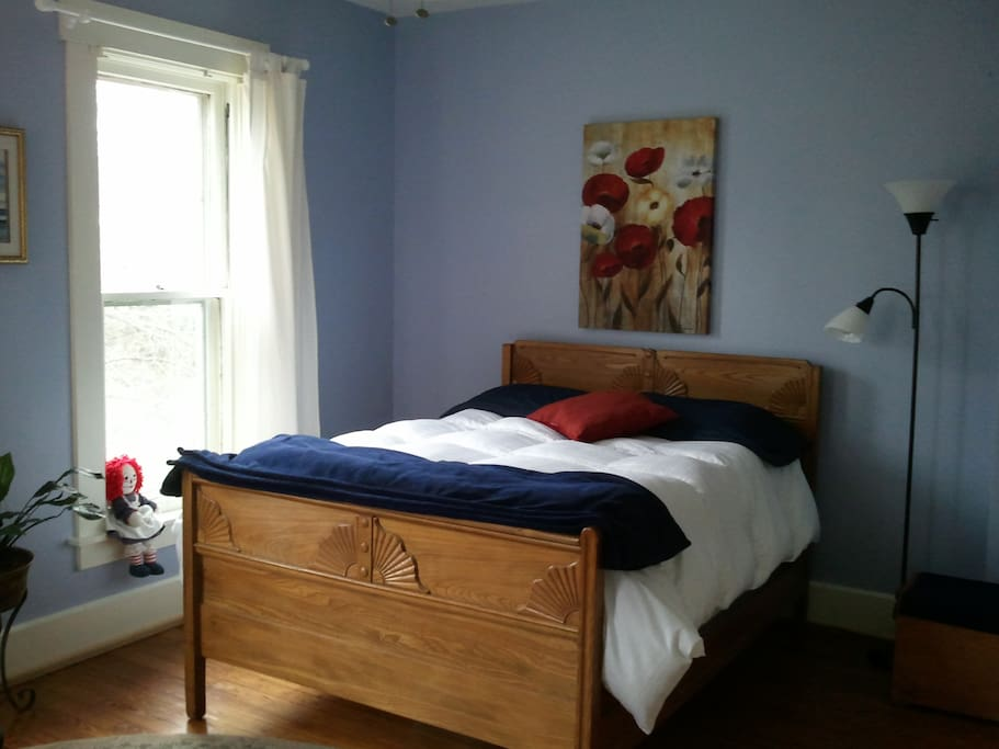 The Blue Chestnut is a spacious, comfortable and well-lit guest room.